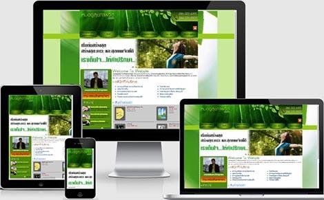 รับออกแบบเว็บไซต์บริการบำบัดด้านจิตเวช,บริษัทรับจ้างเขียนเว็บหมอโรคจิต