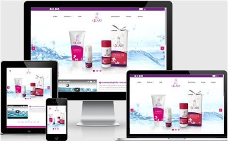 ทำเว็บไซต์ผลิตภัณฑ์ดูแลจุดซ้อนเร้น,รับทำเว็บไซต์ราคาถูกสินค้าทำความสะอาด