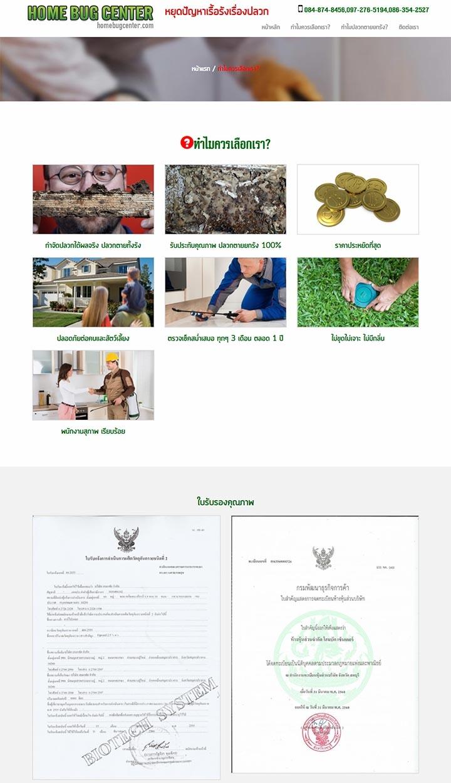 รับทำเว็บไซต์รับกำจัดปลวกแมลง